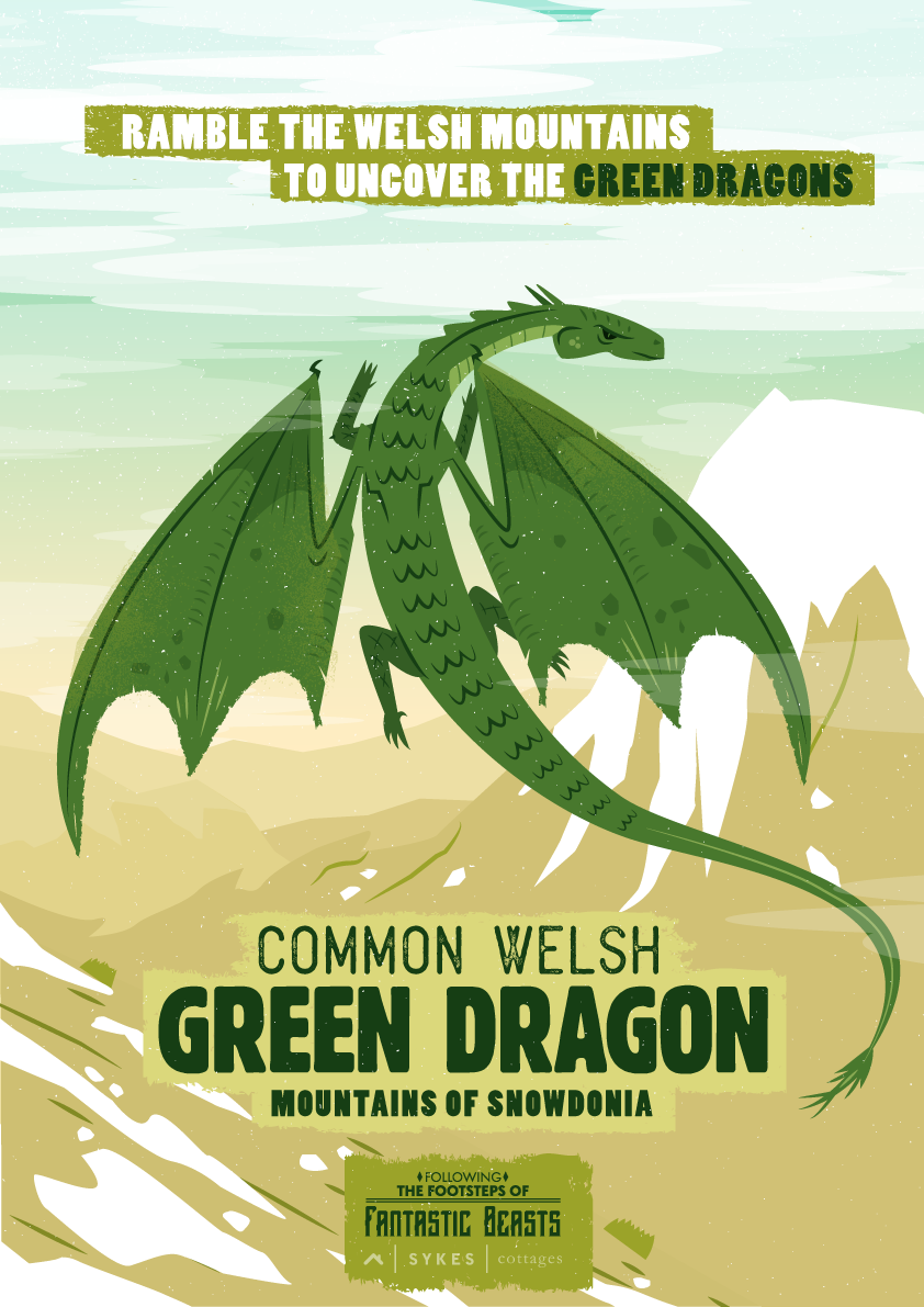 Common Welsh Green Dragon poster