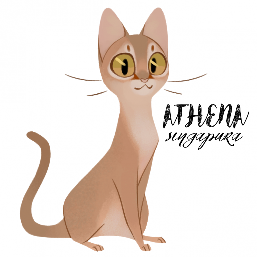 Athena as cat
