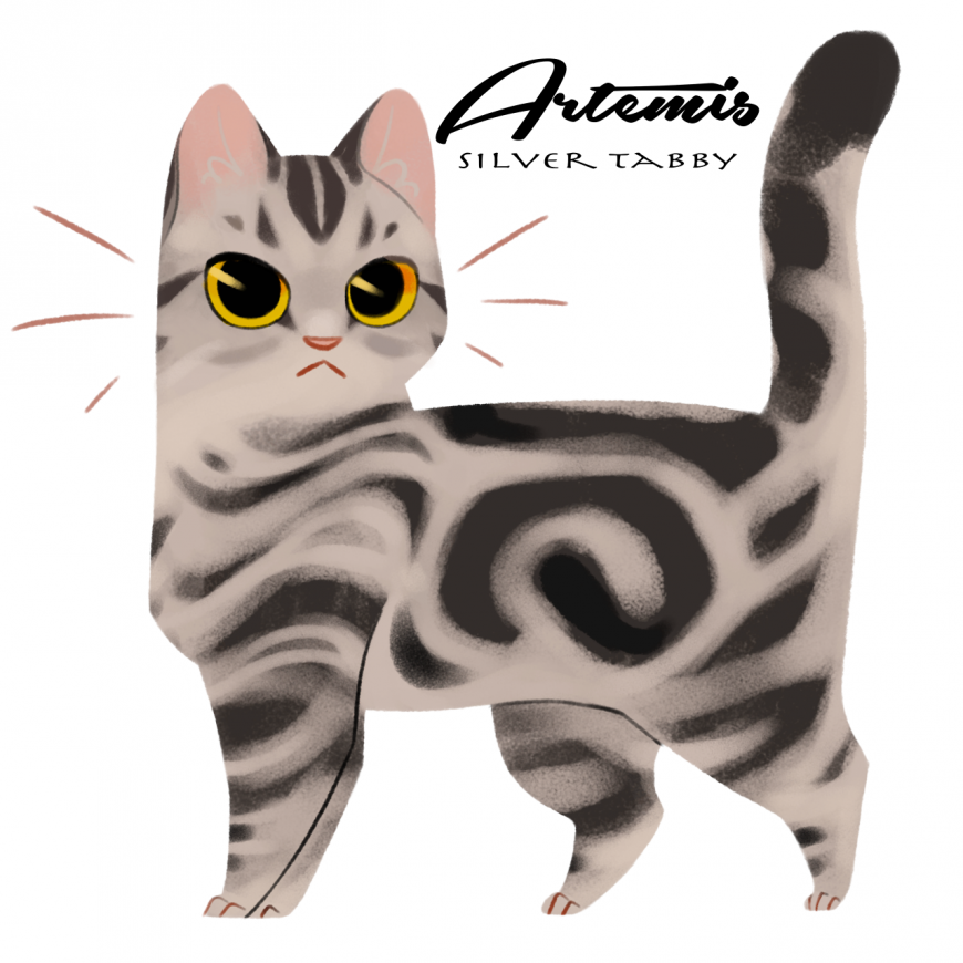 Artemis as cat