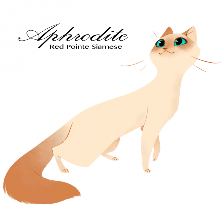 Aphrodite as cat