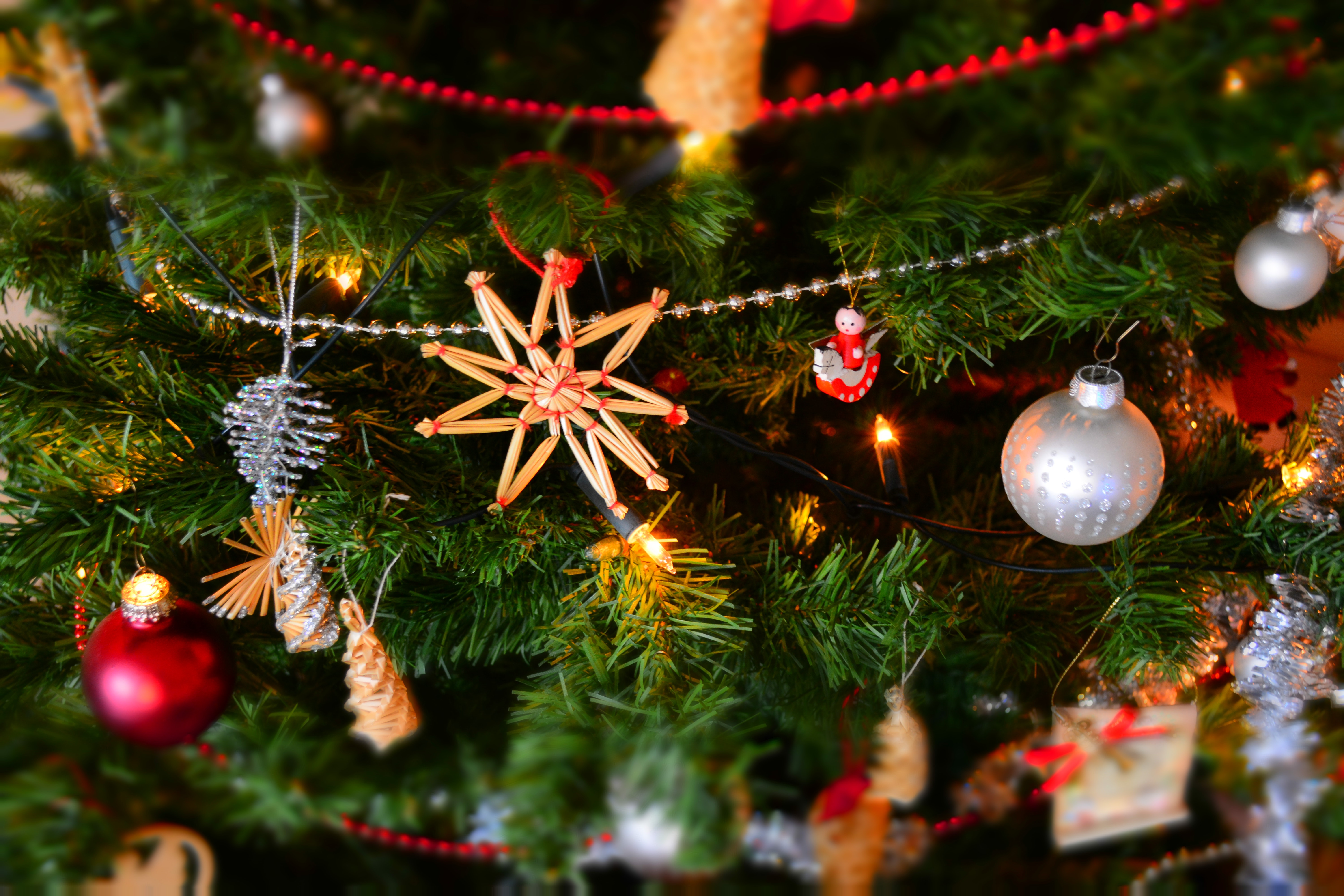 Super Big and Beautiful Christmas photos that you can use as ...