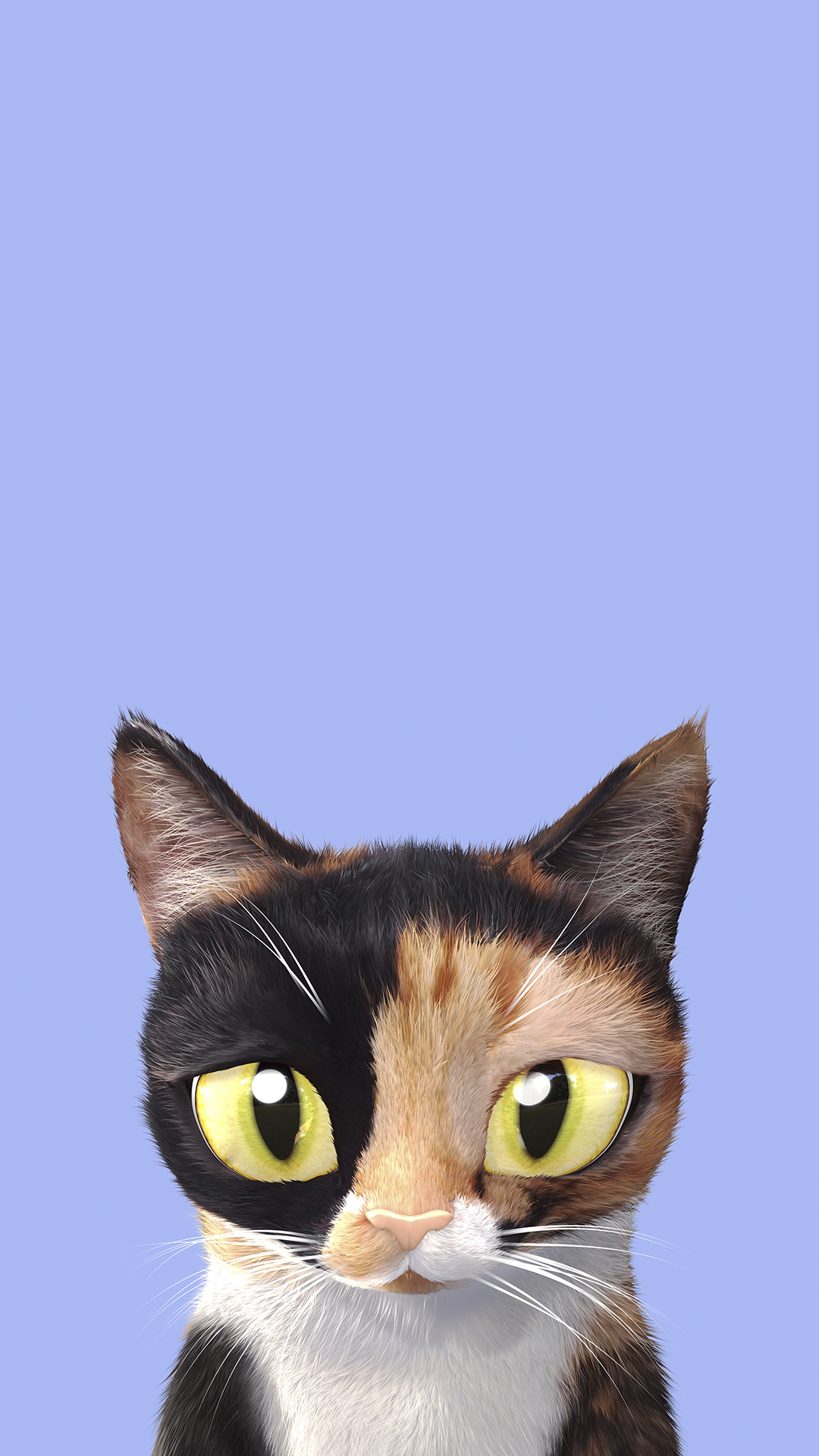 Super Cute And Bright Phone Wallpapers With Cats Youloveit Com