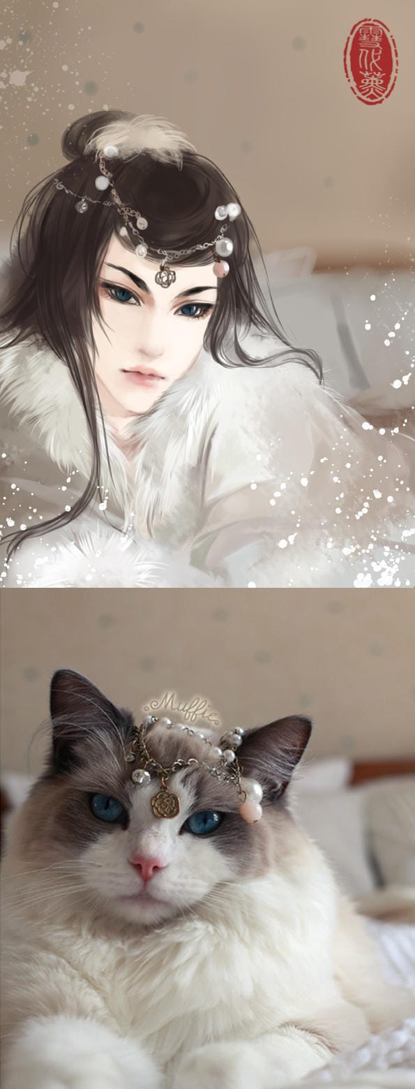 Cats transformed into human in beautiful art