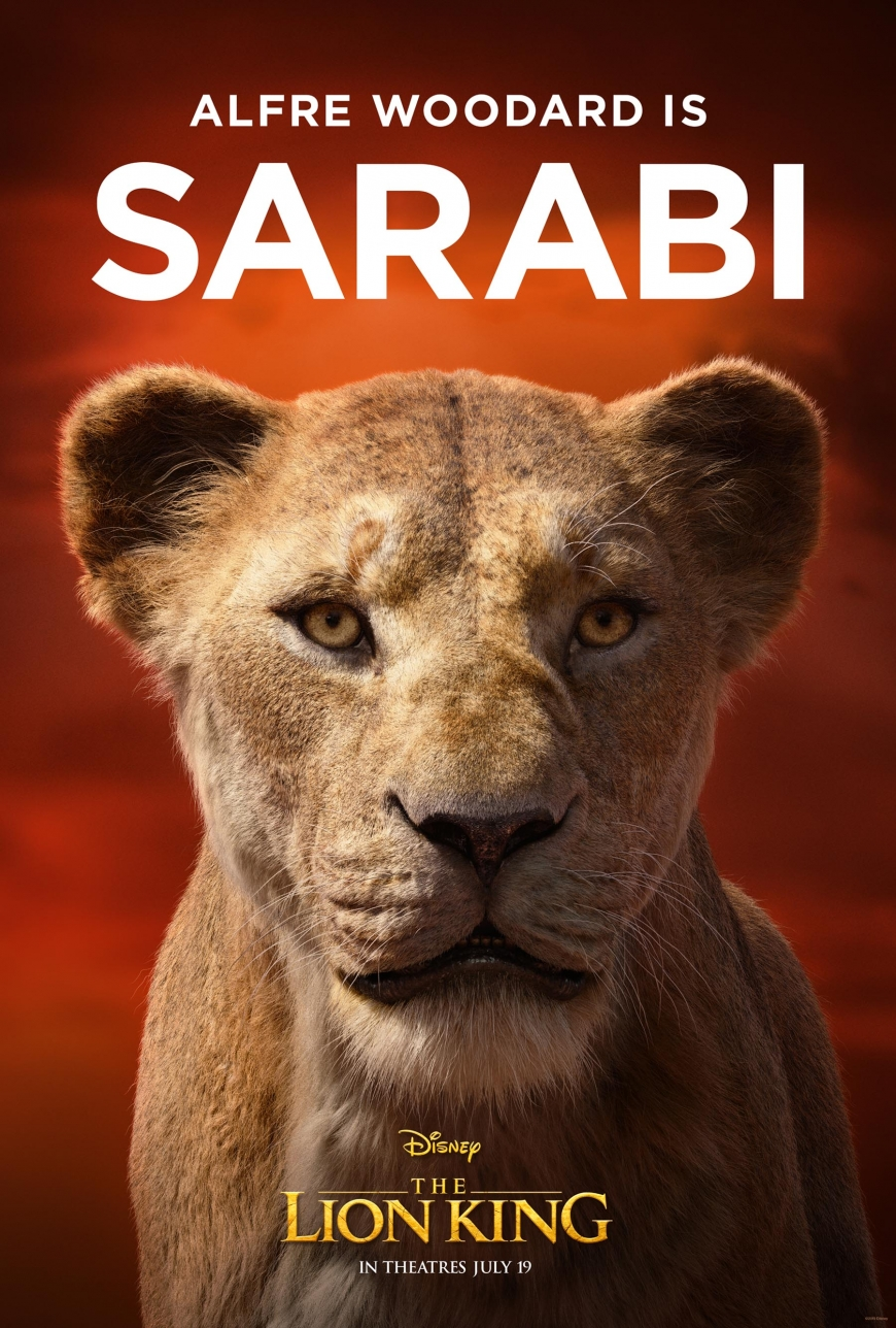 The Lion king film character posters big pictures