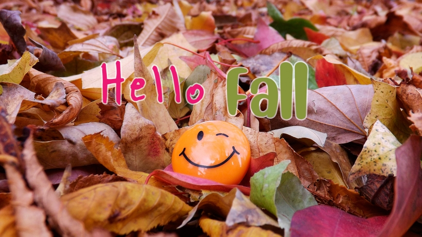 Hello Fall new 2019 images with cute pictures