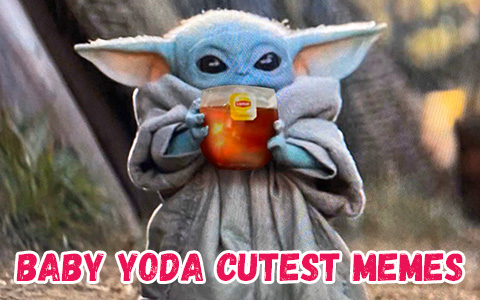 Best and Cutest 12 Memes of Baby Yoda from the Mandalorian