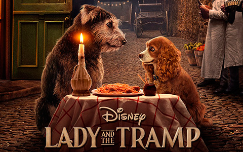 First poster for new Lady and The Tramp Disney + movie